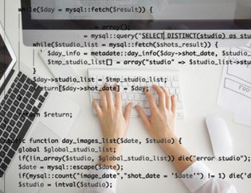 Softwareentwicklung als Dienstleistung